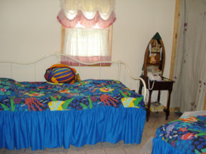 Photo of twin beds in back bedroom.